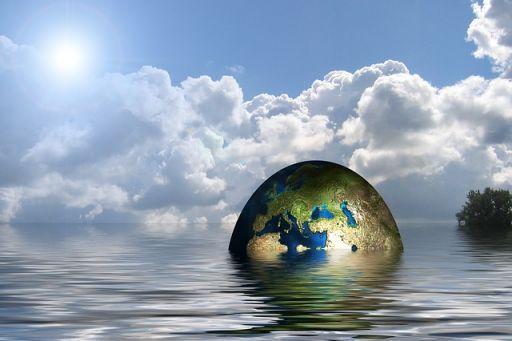 ley penal del ambiente